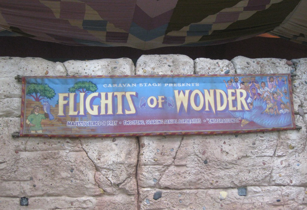 Flights of Wonder (Animal Kingdom – Asia)