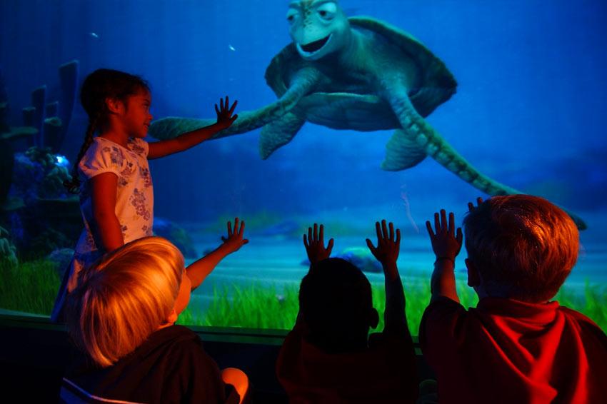 TOP 5 – Atrações inspiradas por filmes da Pixar