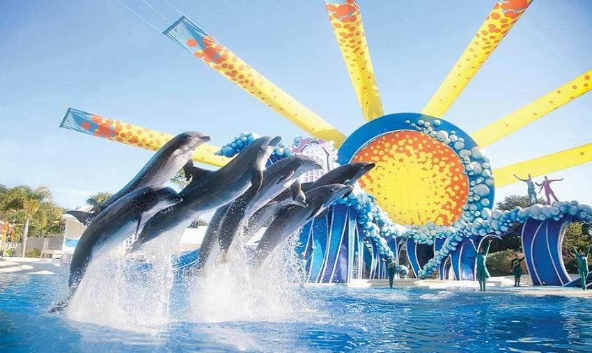 SeaWorld planeja futuro com expansão internacional
